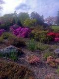 Natur im Park Lizenzfreie Stockbilder