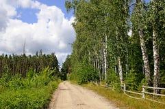 Natur im Sommer. Holz Stockbild