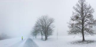 Natur im Winter mit der Landschaft umfasst im Schnee Stockfotografie