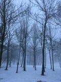 Natur im Winter mit der Landschaft umfasst im Schnee Lizenzfreie Stockfotos