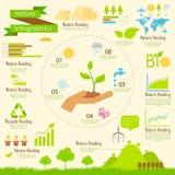 Natur Infographics Lizenzfreie Stockfotos