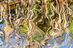 Natur ist ein Künstler in Bizard-Insel Stockbild