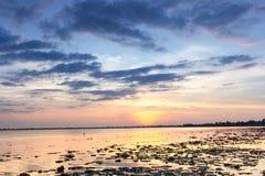 Natur, Jahreszeit, Hintergrund Lizenzfreies Stockbild