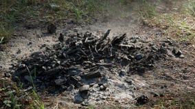 Natur 4k för aska för gallerBBQ-kol arkivfilmer
