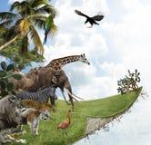 Natur-Konzept Stockbild