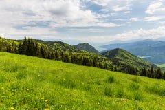 Natur längs den cykla vägen från Malino Brdo till Revuce i Slova Royaltyfri Fotografi