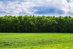 Natur landskap Arkivfoto