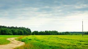 Natur-landwirtschaftliche Landschaft Lizenzfreies Stockfoto