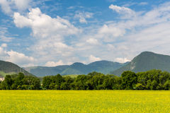 Natur in Liptov-Region, Slowakei in Sommer 2015 Lizenzfreie Stockbilder