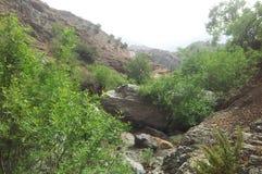 Natur Marocko arkivbilder