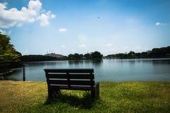 Natur med ensamhetbakgrund Fotografering för Bildbyråer