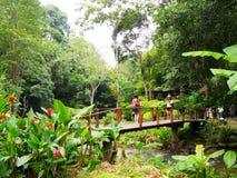 Natur nimmt Thailand Zuflucht Stockfotos