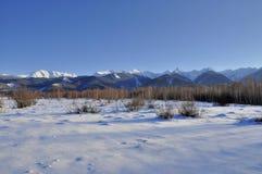 Natur och berg i vintertiden Royaltyfri Fotografi