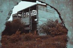 Natur och den v?nstra fabriken Urban arkivbild