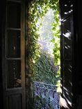 Natur och friskhet av morgonen som kommer till och med det gamla fönstret arkivbild