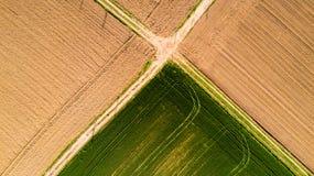 Natur och landskap: flyg- sikt av ett fält, odling, grönt gräs, bygd, lantbruk, royaltyfria foton
