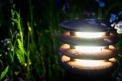 Natur och streetlights Fotografering för Bildbyråer