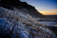 Natur på is Fotografering för Bildbyråer