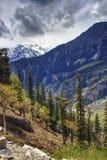 Natur på Himalaya royaltyfria bilder