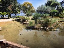 Natur, Park Lizenzfreies Stockfoto