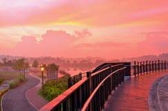 Natur-Park-Sonnenaufgang Stockfotos