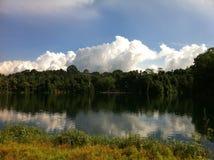 Natur-Reflexion stockfoto