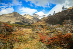 Natur runt om monteringen Fitzroy, sydligt Patagonian isfält, Argentina Royaltyfria Bilder