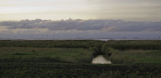 Natur scenery Stockfotografie