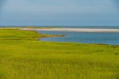 Natur sceny na łowieckich wysp południe Carolina Zdjęcia Stock