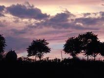 Natur-Schönheit Lizenzfreie Stockfotos