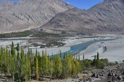 Natur - Schönheit der Wüste Lizenzfreie Stockbilder