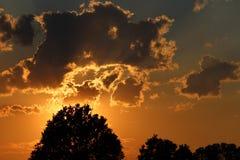 Natur-Schattenbild Stockfotografie