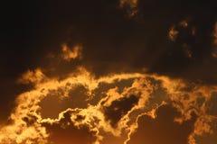 Natur-Schattenbild Stockfotos