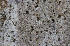 Natur sea stone surface texture. Natur sea stone wall royalty free stock images