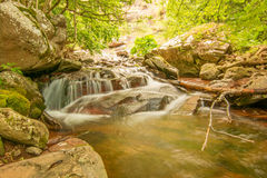 Natur in Serbien Stara Planina Stockbild