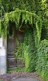 Natur som tar över ingångsdörren Royaltyfri Fotografi