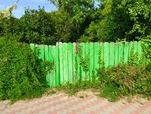 Natur som återtar det manmade staketet Royaltyfri Fotografi