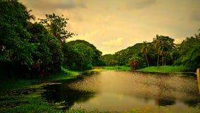 Natur som visar ytterst skönhet i höst Fotografering för Bildbyråer