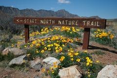Natur-Spur Stockfoto