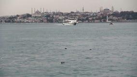 Natur stad för hav, Istanbul, December 2016, Turkiet stock video
