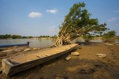 Natur in Thailand Lizenzfreie Stockbilder