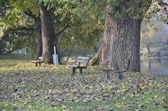 Natur und Bänke für das Sitzen Lizenzfreies Stockfoto