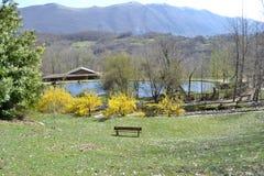 Natur und Bank im Park lizenzfreies stockbild