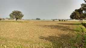 Natur und Bauernhof lizenzfreie stockbilder
