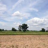 Natur und Bauernhof Lizenzfreies Stockbild
