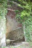 Natur und Grün ergreifen und bedecken alte vergessene mittelalterliche und Militärgebäude weltliche Gebäude verloren jetzt im Ged stockfoto