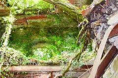 Natur und Grün ergreifen und bedecken alte vergessene mittelalterliche und Militärgebäude weltliche Gebäude verloren jetzt im Ged lizenzfreies stockfoto