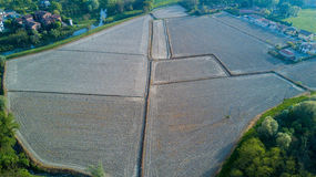 Natur und Landschaft: Vogelperspektive eines Feldes, Bearbeitung, grünes Gras Stockbild
