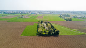 Natur und Landschaft: Vogelperspektive eines Feldes, Bearbeitung, grünes Gras, Landschaft, bewirtschaftend, Stockfoto