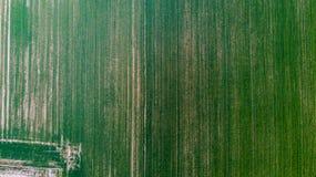Natur und Landschaft: Vogelperspektive eines Feldes, Bearbeitung, grünes Gras, Landschaft, bewirtschaftend, Stockfotografie